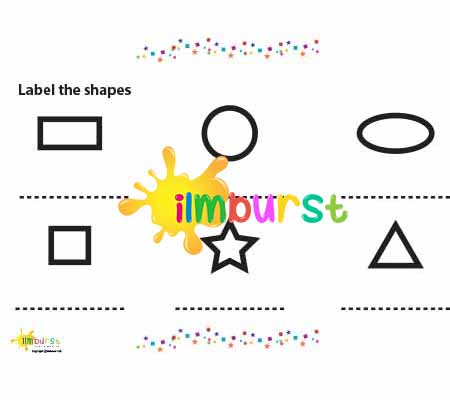 Label the Shapes