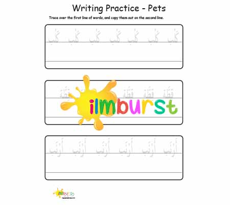 Writing Practice – Pets