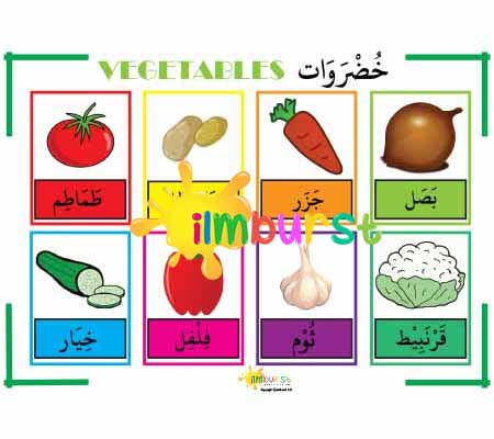 Arabic Vocabulary – Vegetable Chart